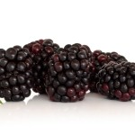 ovocie cernice