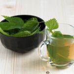 žihľavový čaj v pohári a žihľava v miske