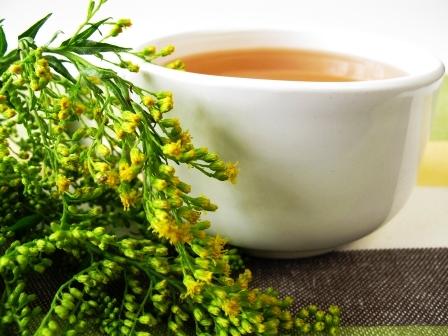Šálka bylinného čaju so zlatobyľom