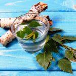 Brezová prírodná šťava detoxikuje v pohári na brezovej kôre a brezovej vetve.