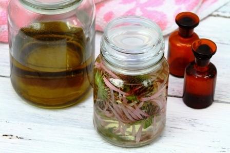 Echinacea tinktura