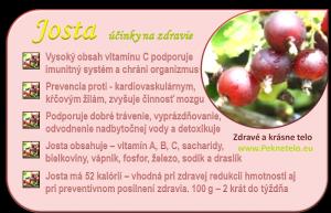 Info Josta