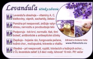 Info Levanduľa