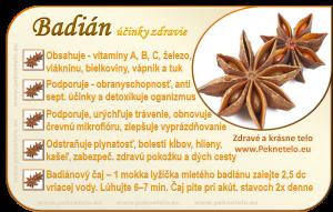 Info obrazok badian