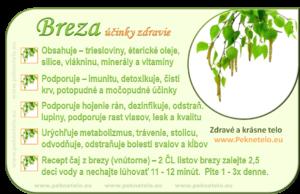 Info breza