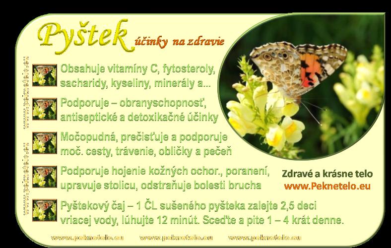 Info obrázok pyštek obyčajný