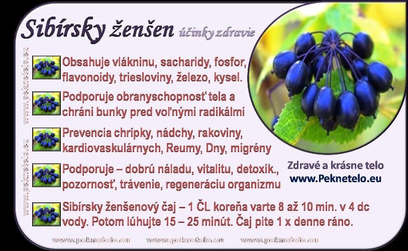 Info obrázok sibírsky ženšen