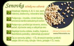 Info senovka