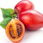 tamarillo ovocie