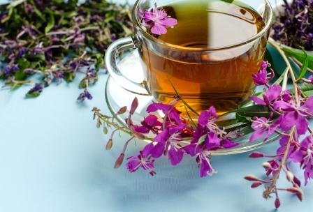 Liečivý čaj vŕbovky kypriny úzkolistej