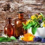 Liečivé fľaše a liečivé byliny na drevenom stole. Bylinková medicína