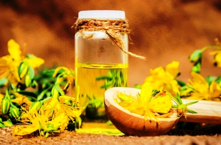 Lubovnik bodkovany. Homeopatie