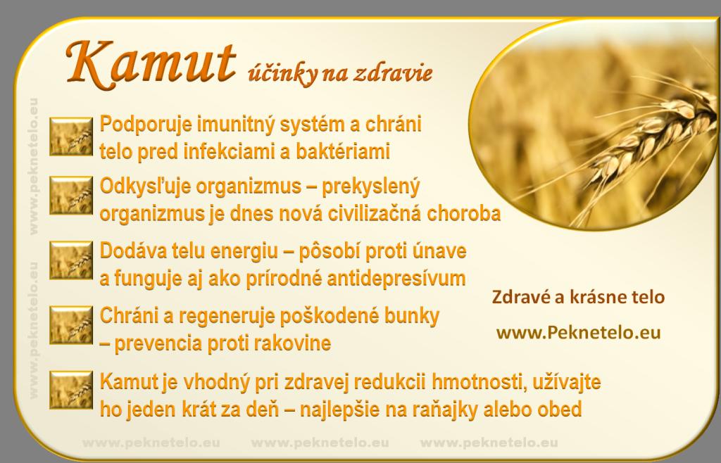 kamut - obilnina