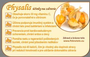Physalis - židovská čerešňa - machovka - info obrázok