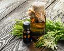 """Thujový olej (tujový olej) je skvelá pomoc """"vonkajšiemu"""" zdraviu, vyskúšajte ho."""
