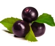 ovocie acai berry
