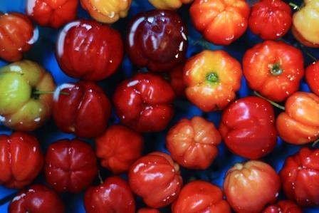 acerola cervene Barbados Cherry plavajuce vo vode