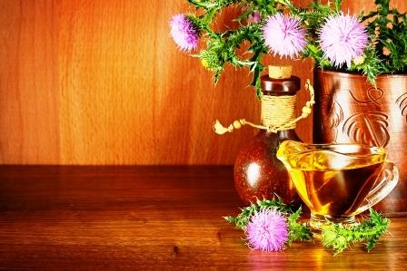 bodliakovy kvet a olej
