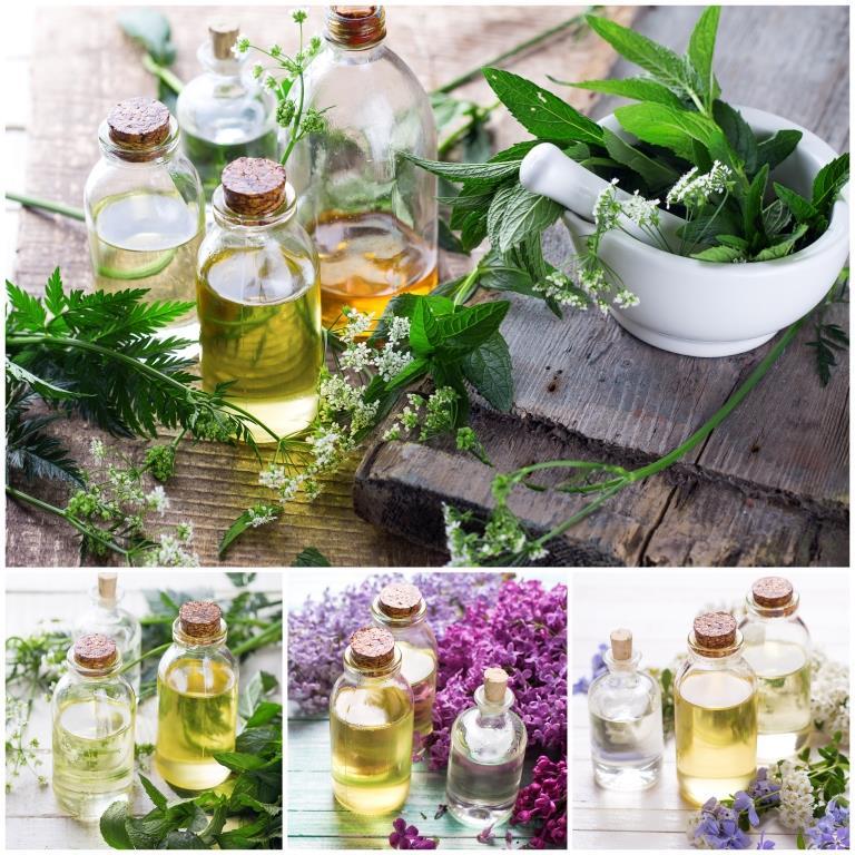 bylinky a liečivé rastliny, oleje