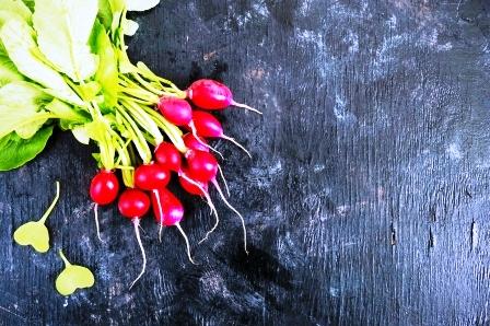cerstva zahradna redkovka
