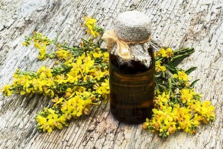 divozelovy olej s kvetmi divozelu