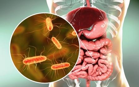 helmifit nici bakterie