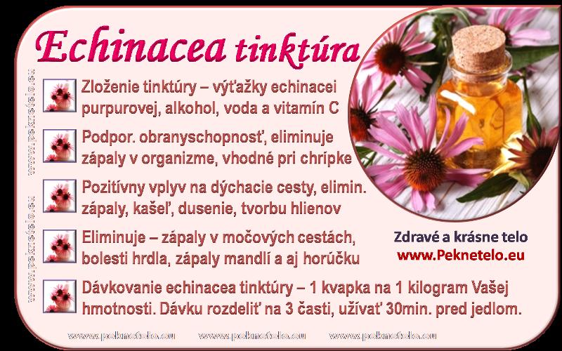info echinacea tinktura