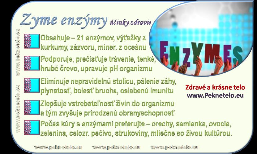 info enzymy zyme
