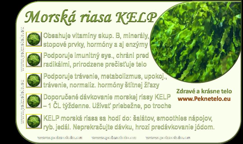info-morska-riasa-kelp