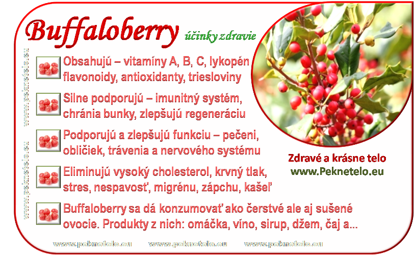 info obrazok buffaloberry