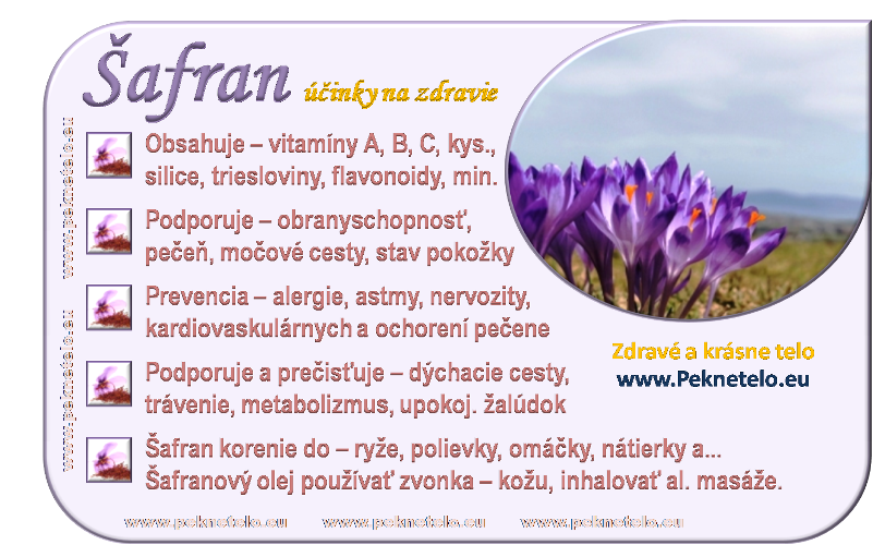 info obrazok safran bylina