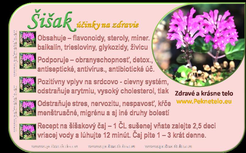 info obrazok sisak bajkalsky