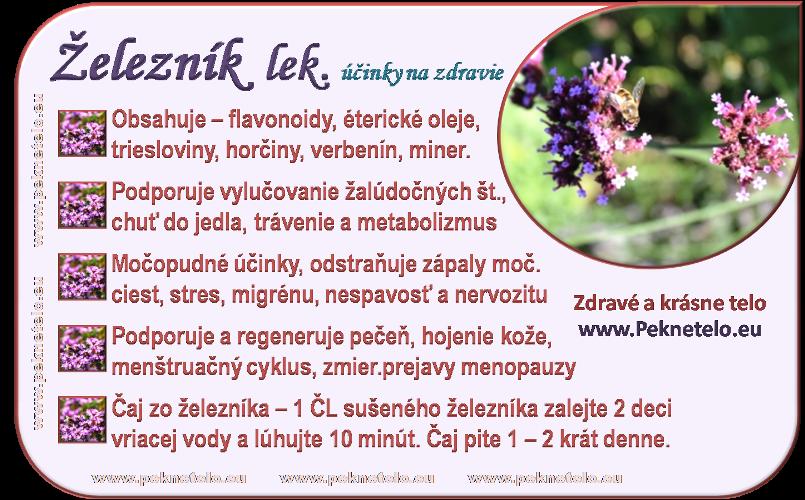 info obrazok zeleznik lekarsky