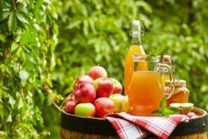 jablkova-stava-na-sude-a-jablka