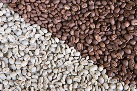 kávové zrná klasickej a zelenej kávy
