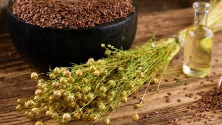 Ľanové semienka a ľanový olej