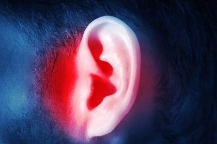 ludske muzske ucho