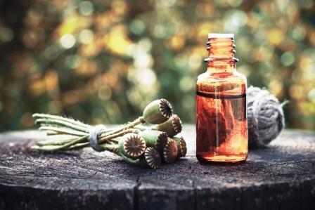 makovy olej a makovica