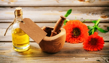 nechtik olej a kvitnuci kvet