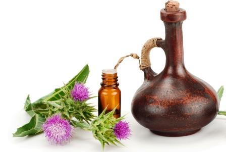 olej z pestreca mariánskeho a rastlina na bielom pozadí