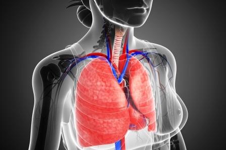 pľúca v tele ženy, prečistenie pľúc