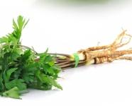 zelenina petrzlen