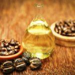 ricínový olej vo fľaši a semená ricínu