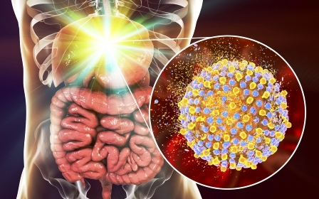 shiitake lieci hepatitidu