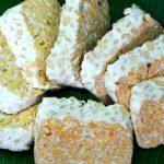 tempeh sójový hermelín