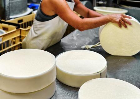 výroba syrov v mliečnom závode