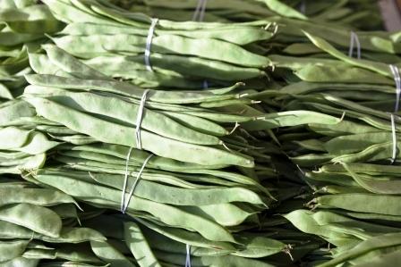 zvazky cerstvych zelenych fazuli
